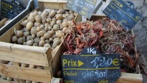 produce - anduze market